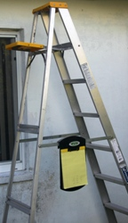 Wheelboard® on Ladder